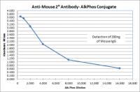 Rabbit anti-Mouse IgG (H&L) - Affinity Pure, ALP Conjugate