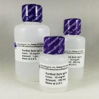Human IgG Purified - Protein A
