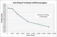 Donkey anti-Sheep IgG (H&L) - Affinity Pure, ALP Conjugate